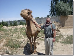 Brian Reed with a camel in Iraq.